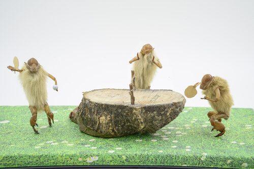 History of table tennis monkeys play