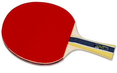 Best ping pong paddles under 100 Butterfly 603 racket